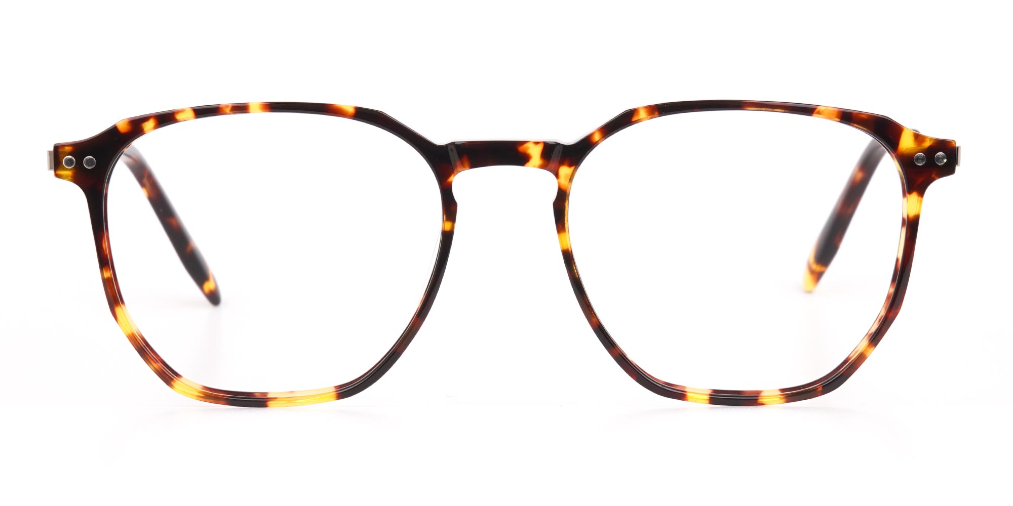 Tortoise Geometric Glasses with silver temple