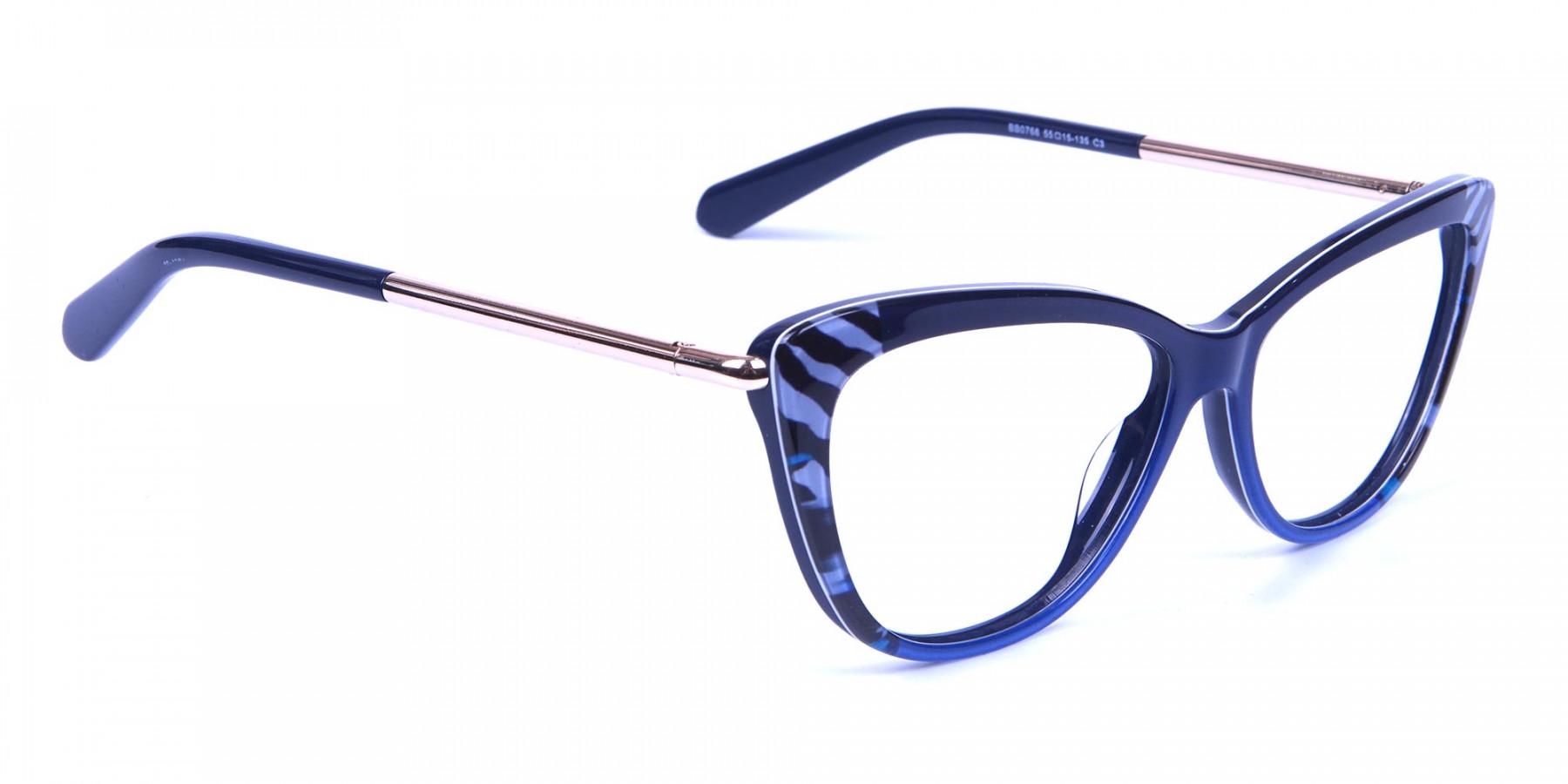 Blue Frames Sport Zebra Stripes