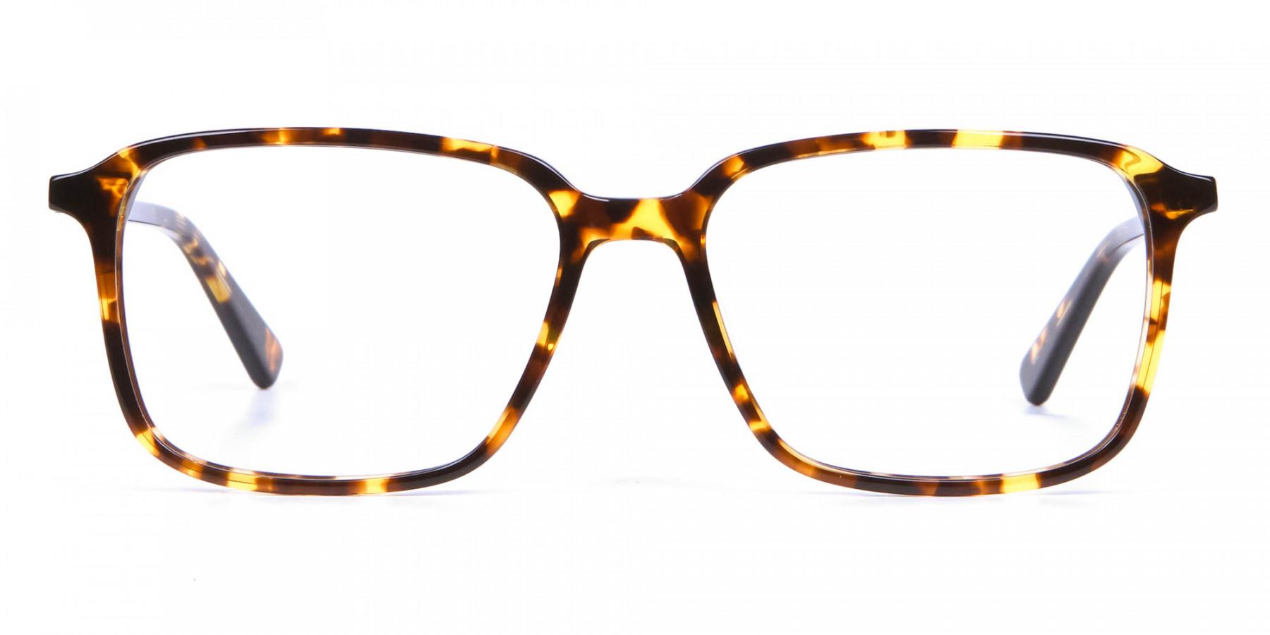 Havana & Tortoiseshell Glasses