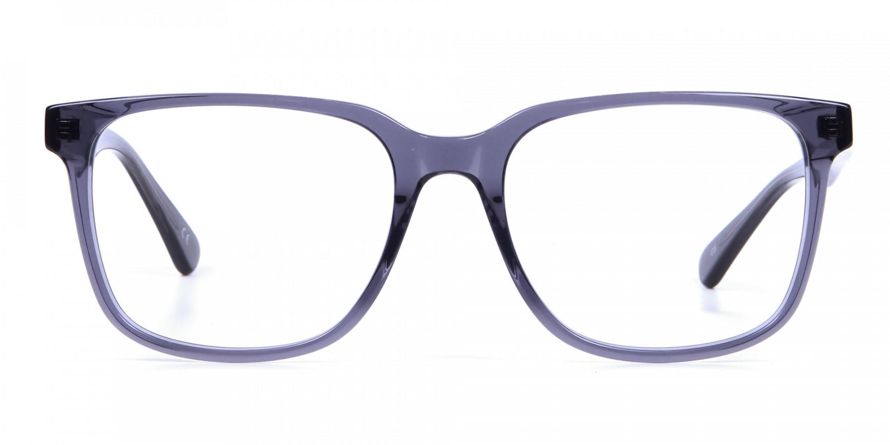 Transparent Grey Glasses