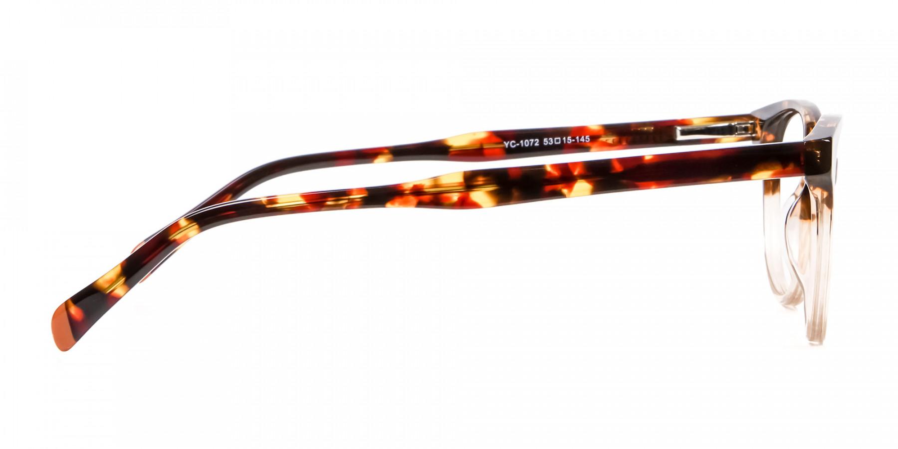 Havana & Tortoiseshell Chic Glasses