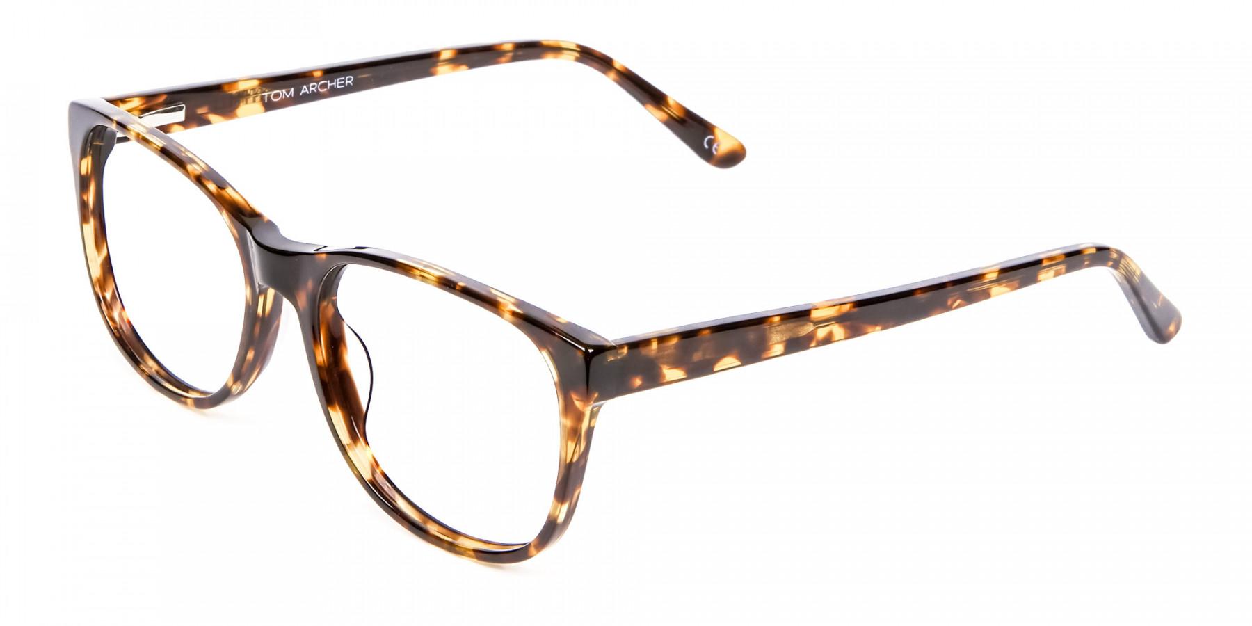 Tortoiseshell & Havana Glasses -1