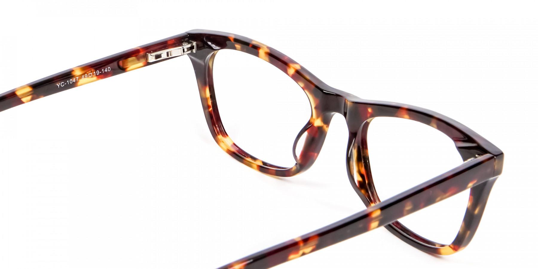 Warm-toned Tortoiseshell Glasses in Cat Eye Style