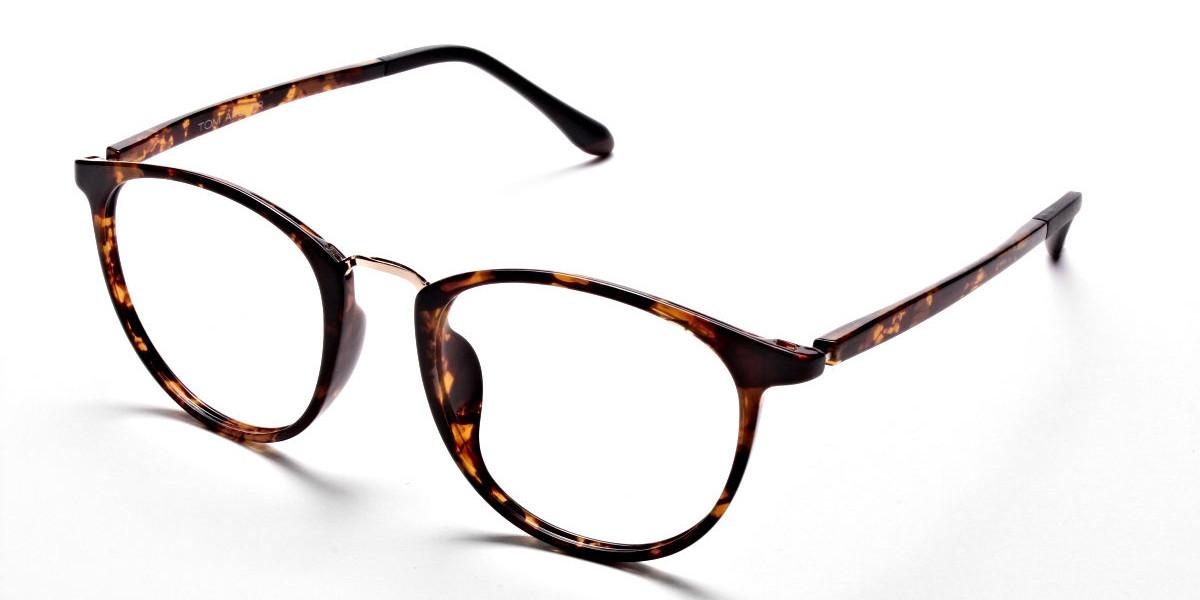 Havana & Tortoise Transparent Glasses
