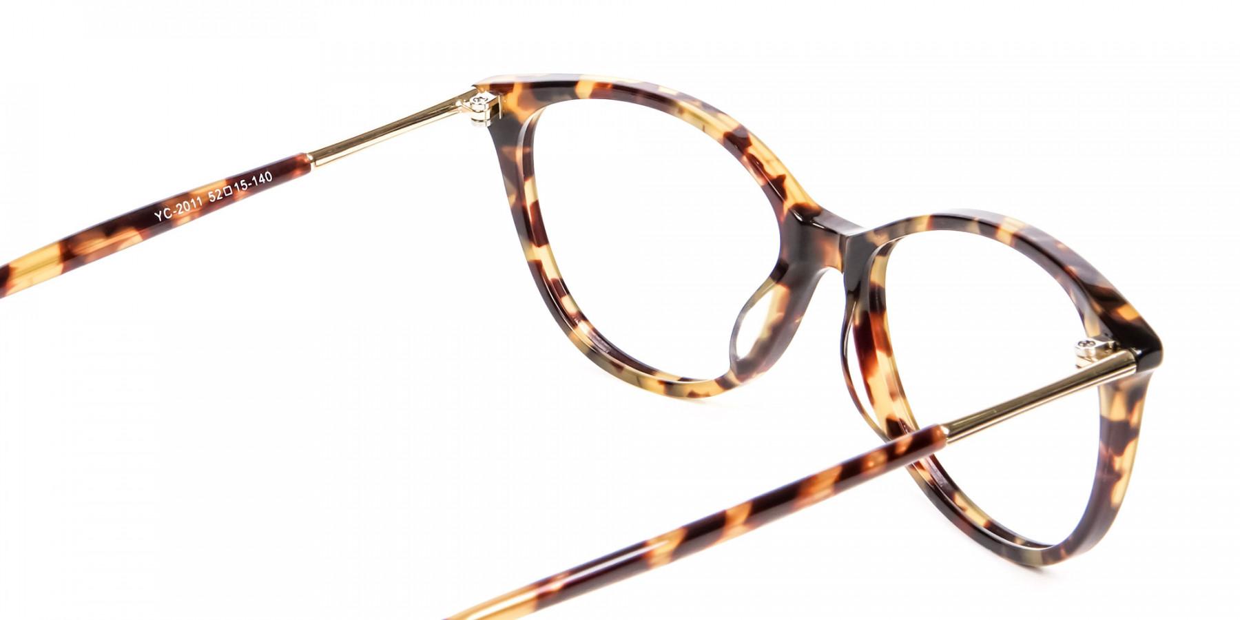 Subtlest Cat-Eye Havana & Tortoiseshell -1