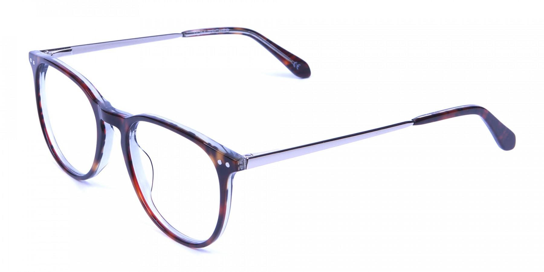 Dark Havana & Tortoise Circle Glasses