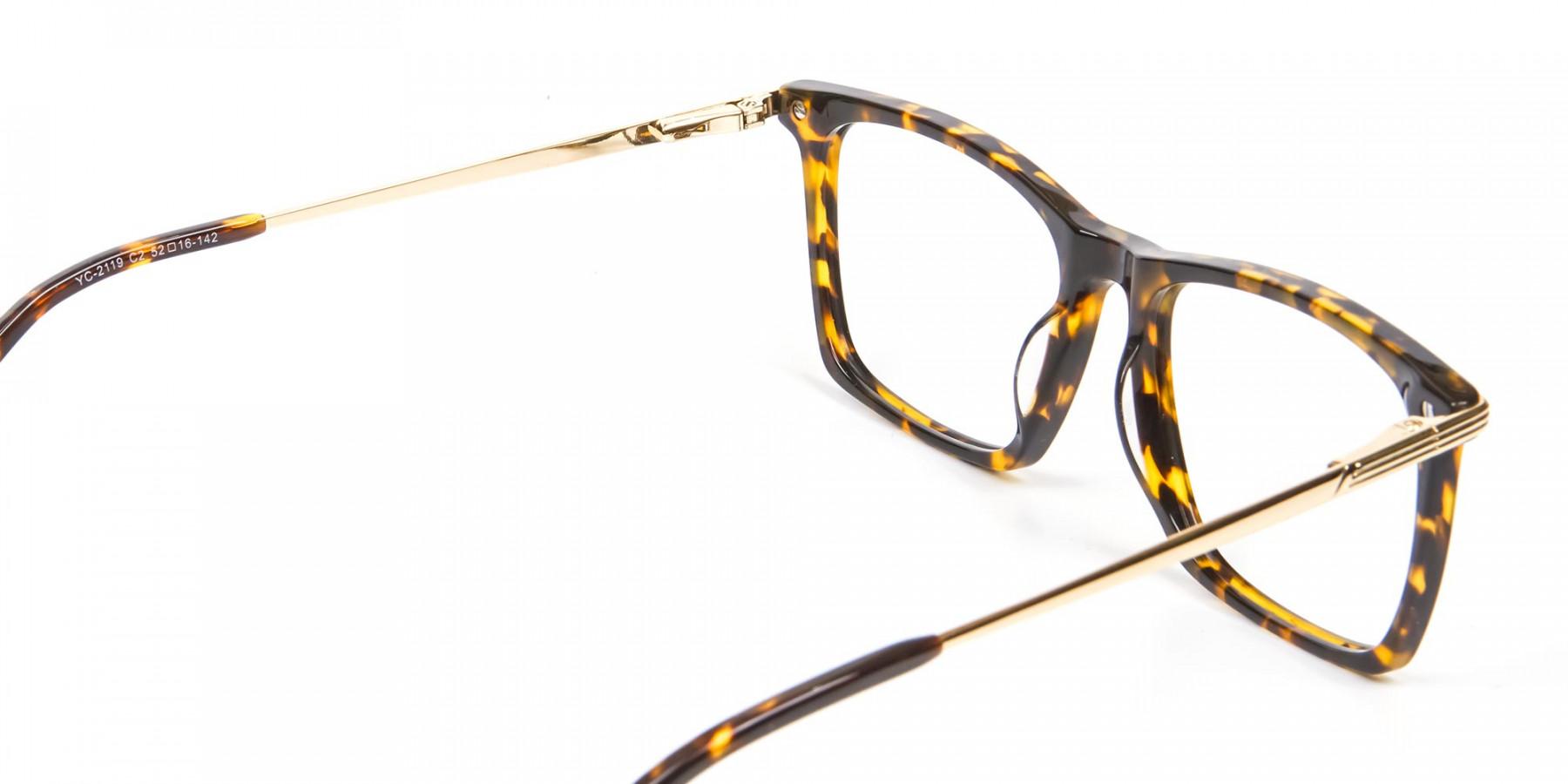 Vigorous Tortoiseshell Colour Frames -1