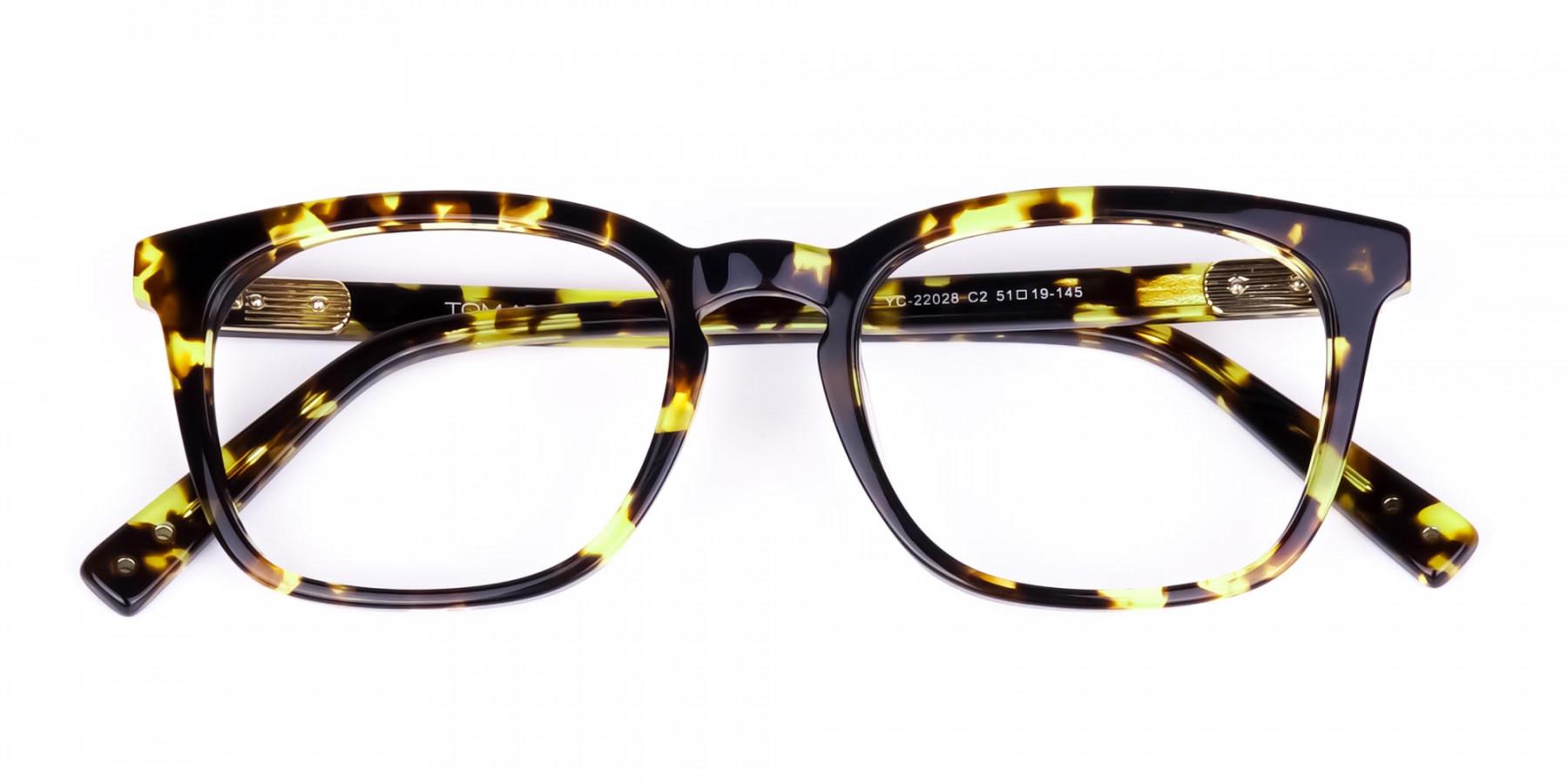 Tortoise-Brown-Wayfarer-Glasses-1