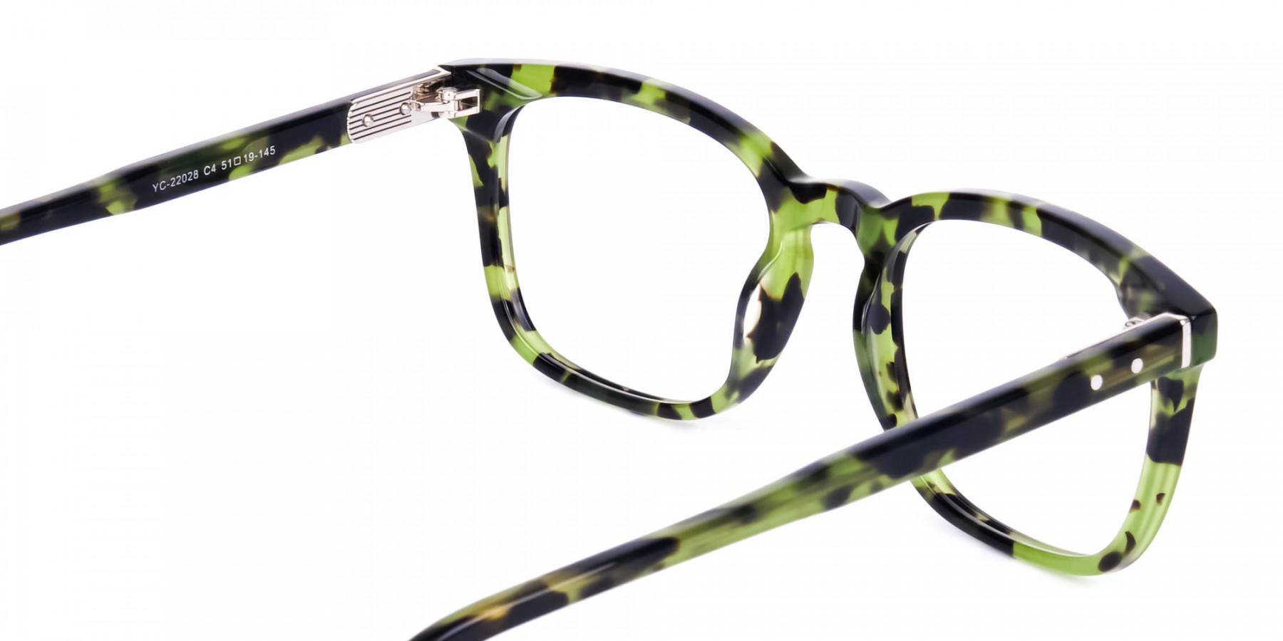 Green-Tortoise-Wayfarer-Glasses-Frame-1