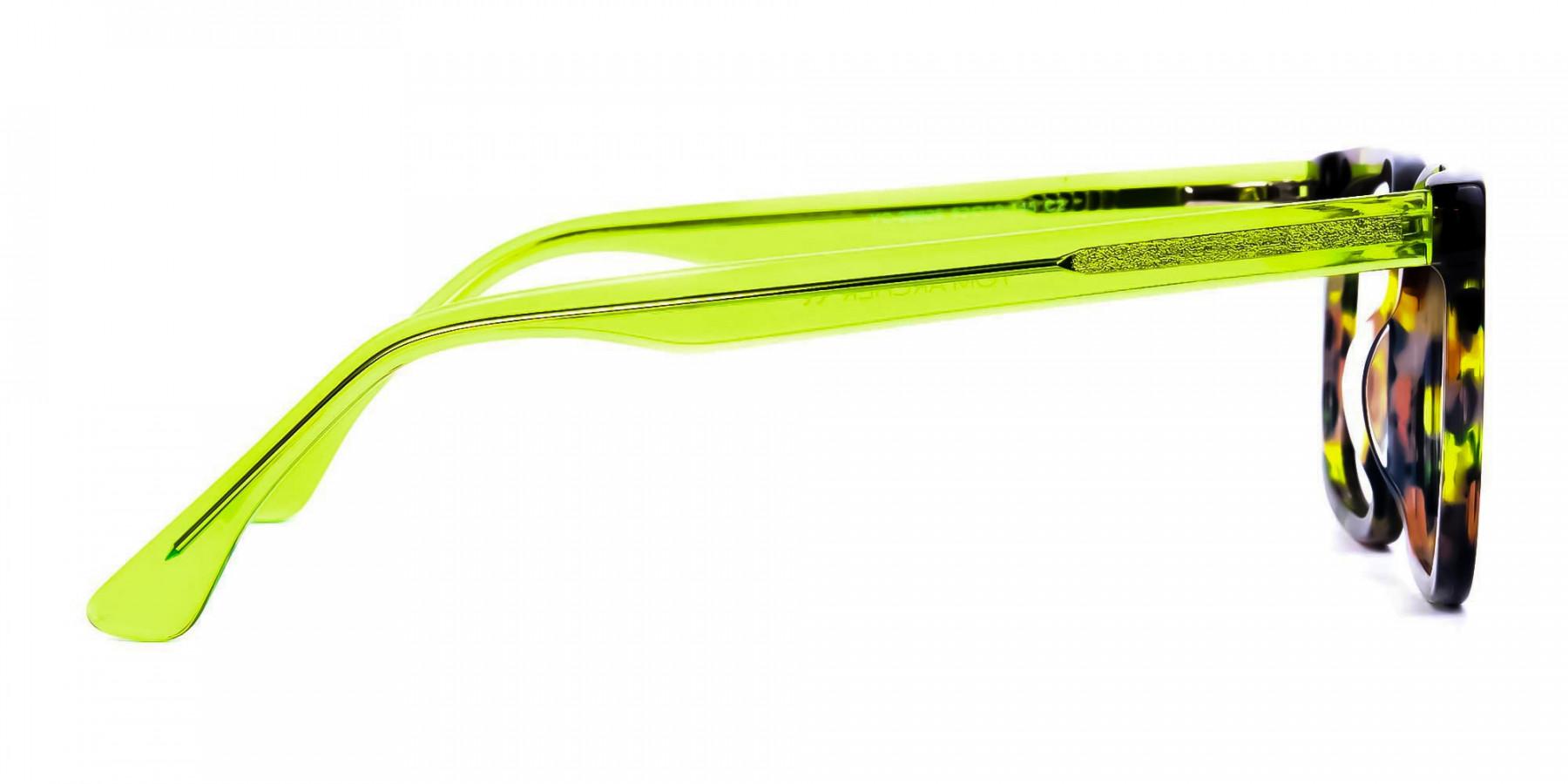 Green-Tortoise-Wayfarer-Glasses-1
