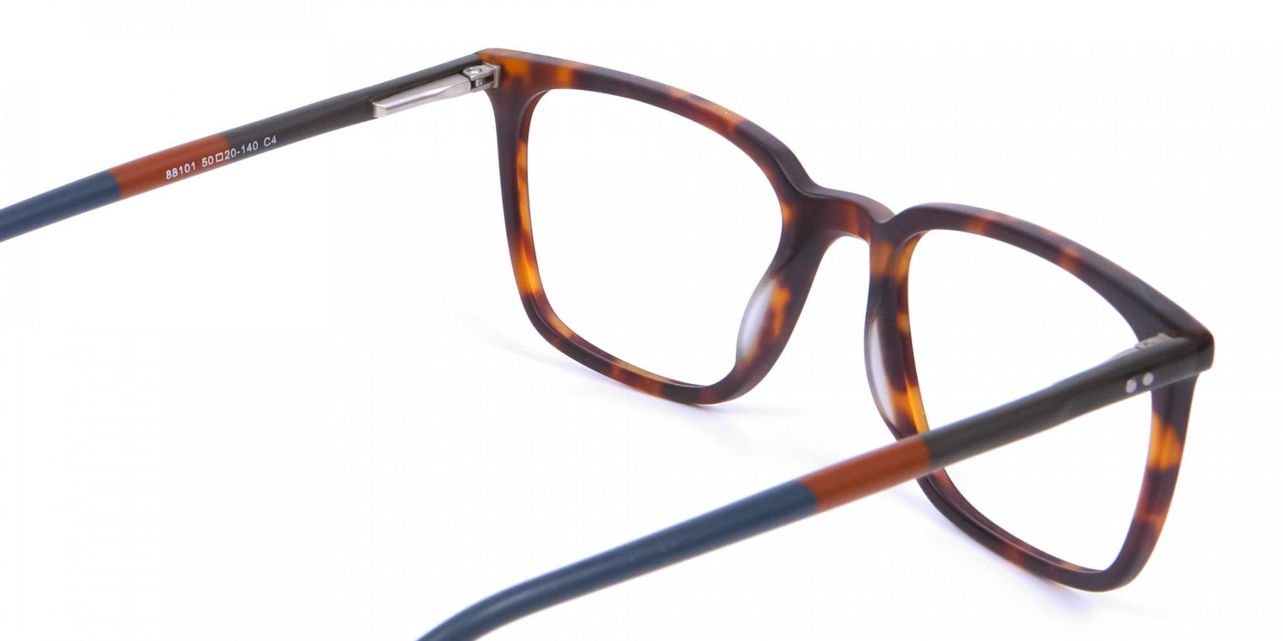 Havana & Tortoiseshell Charmer Glasses