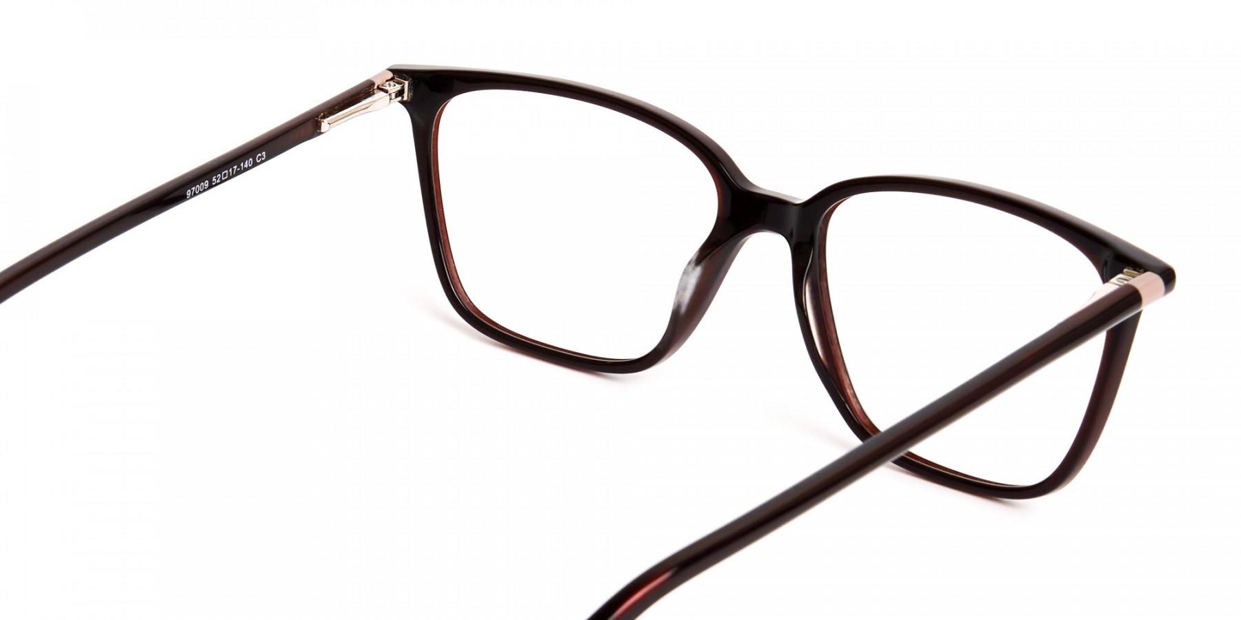 brown-glasses-in-rectangular-cat-eye-frames-1
