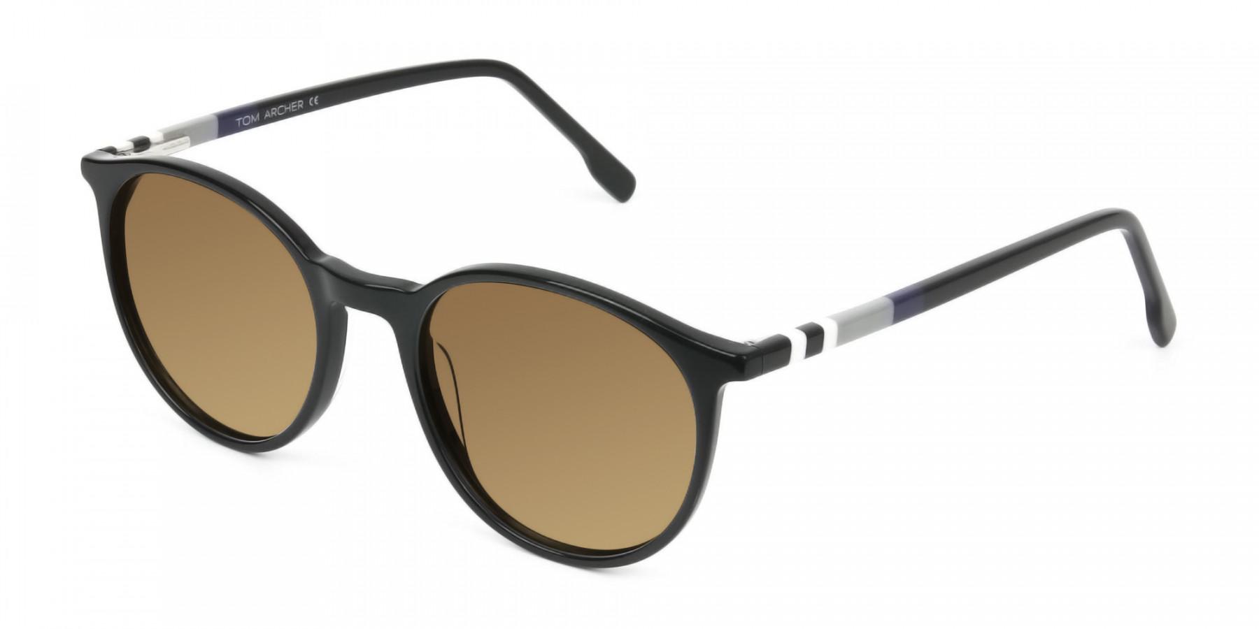 Dark-brown-black-round-sunglasses - 3