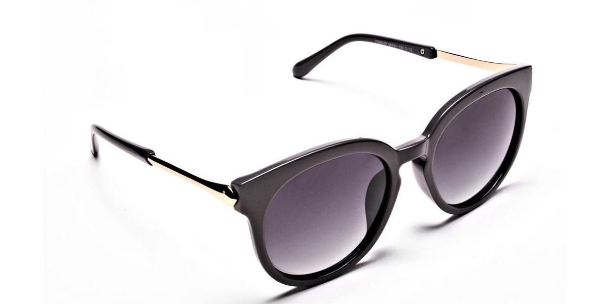Brown & Gold Sunglasses -2