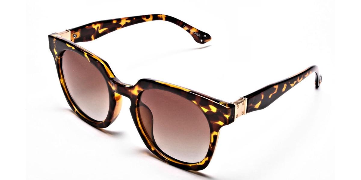Tortoiseshell Leopard Sunglasses -2