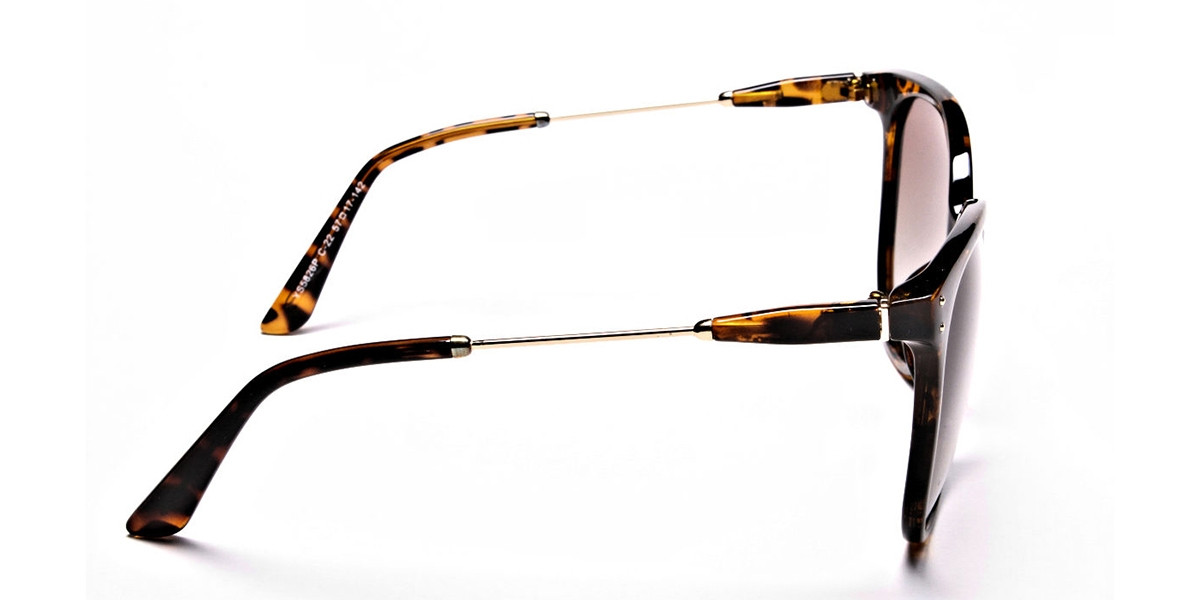 Tortoiseshell sunglasses -2
