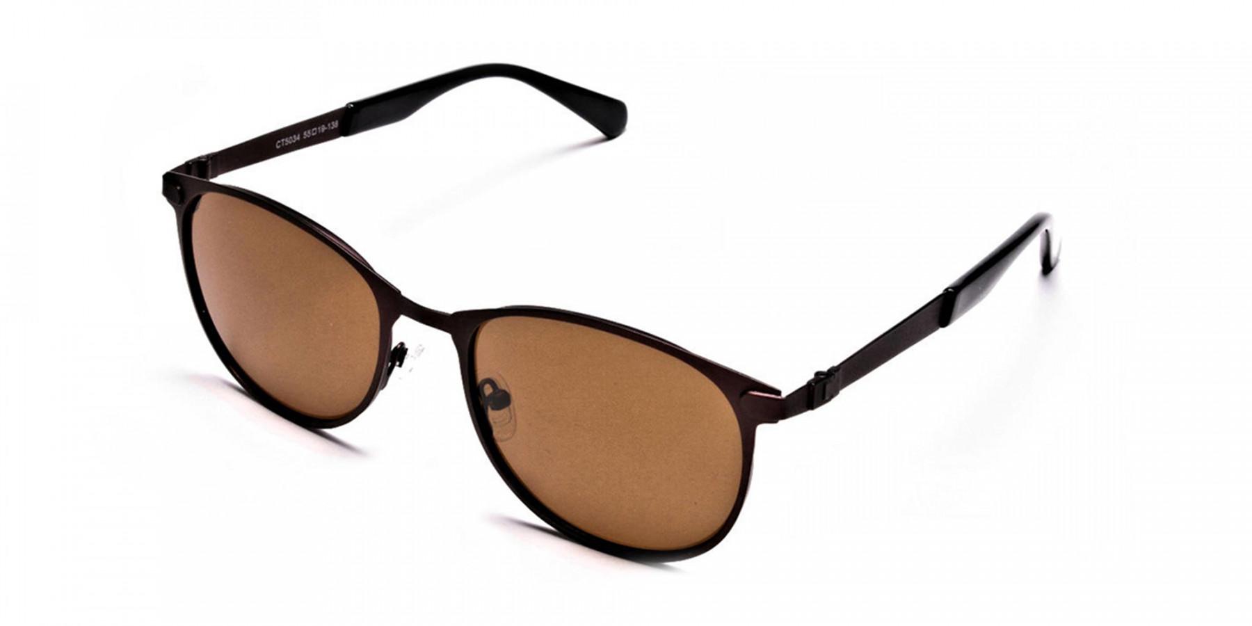 Brown Shady Sunglasses -2