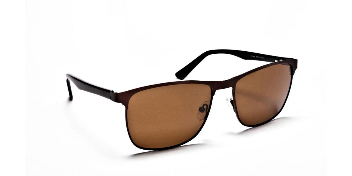 Brown Wayfarer Sunglasses - 2