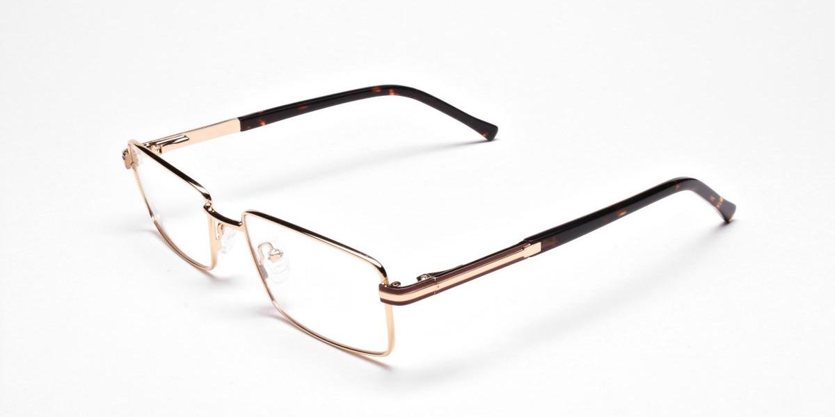 Rectangular Gold and Black Frames for Men & Women -1