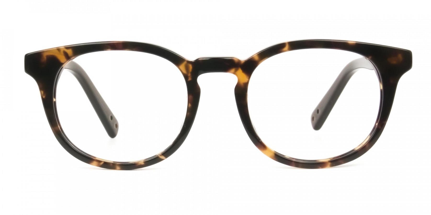Wayfarer Round Havana & Tortoiseshell Handmade Acetate Glasses - 1