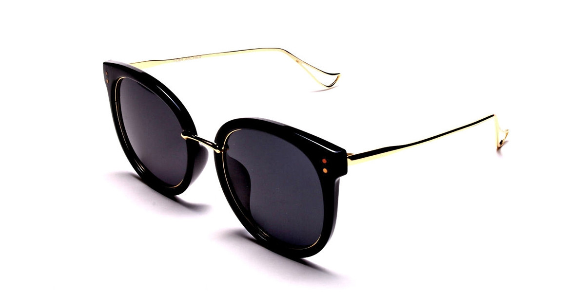 Dark & Chic Sunglasses -2