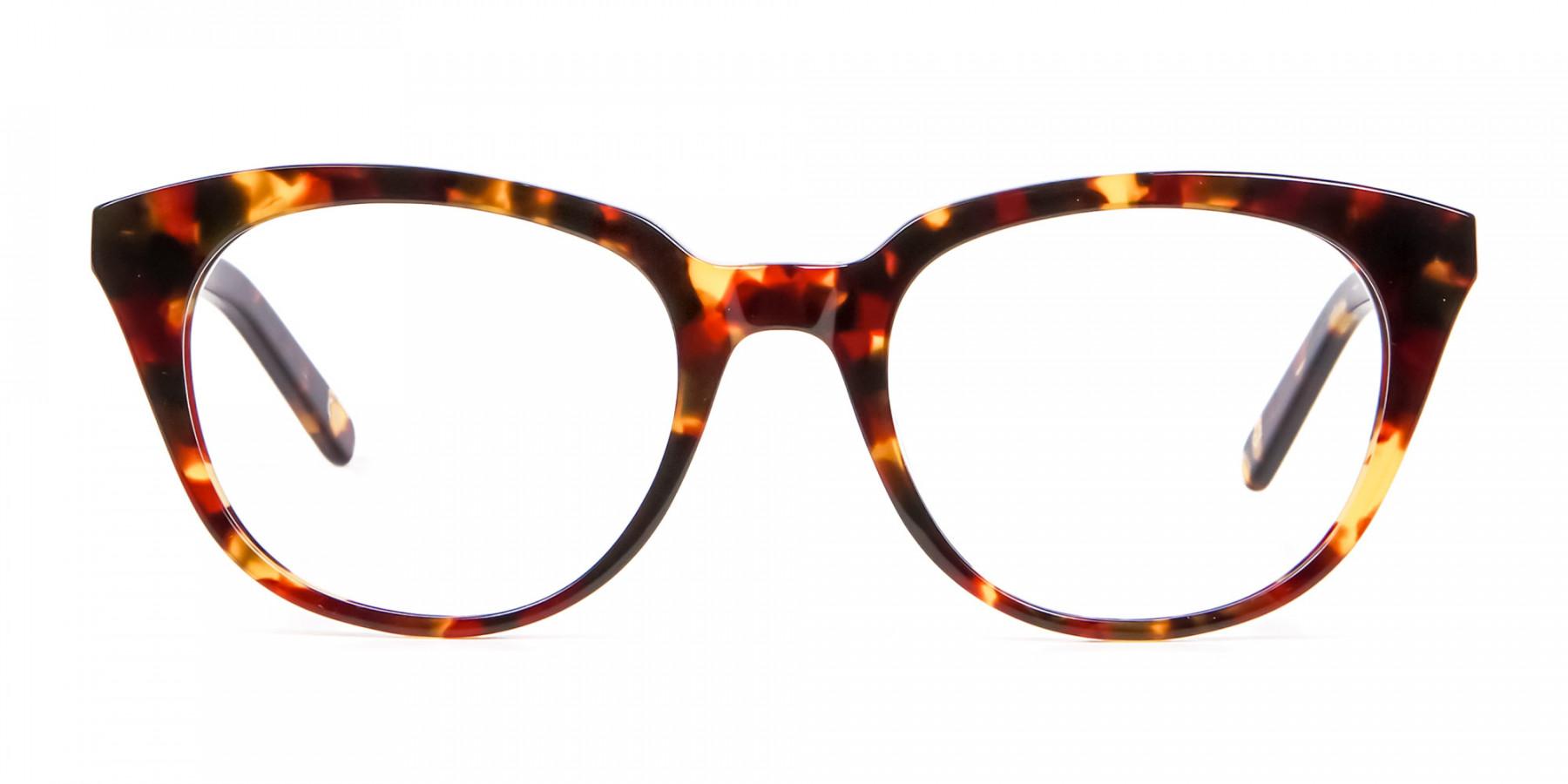 Sunshine Tone Tortoiseshell Glasses