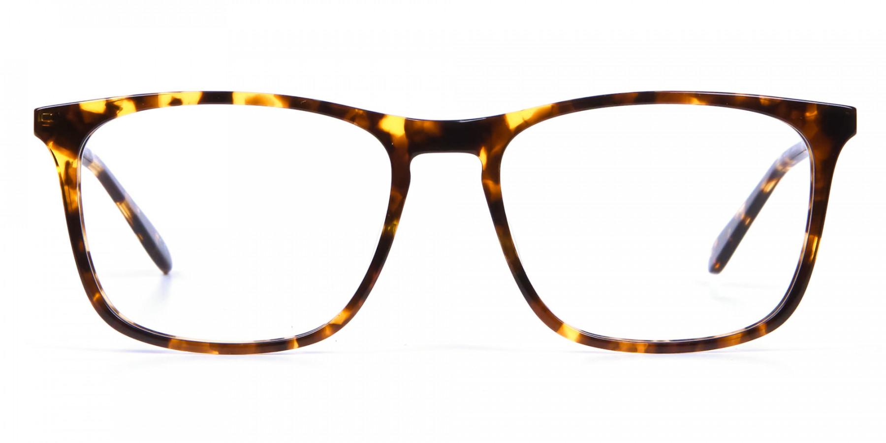 Tortoiseshell Glasses with Metal Arms