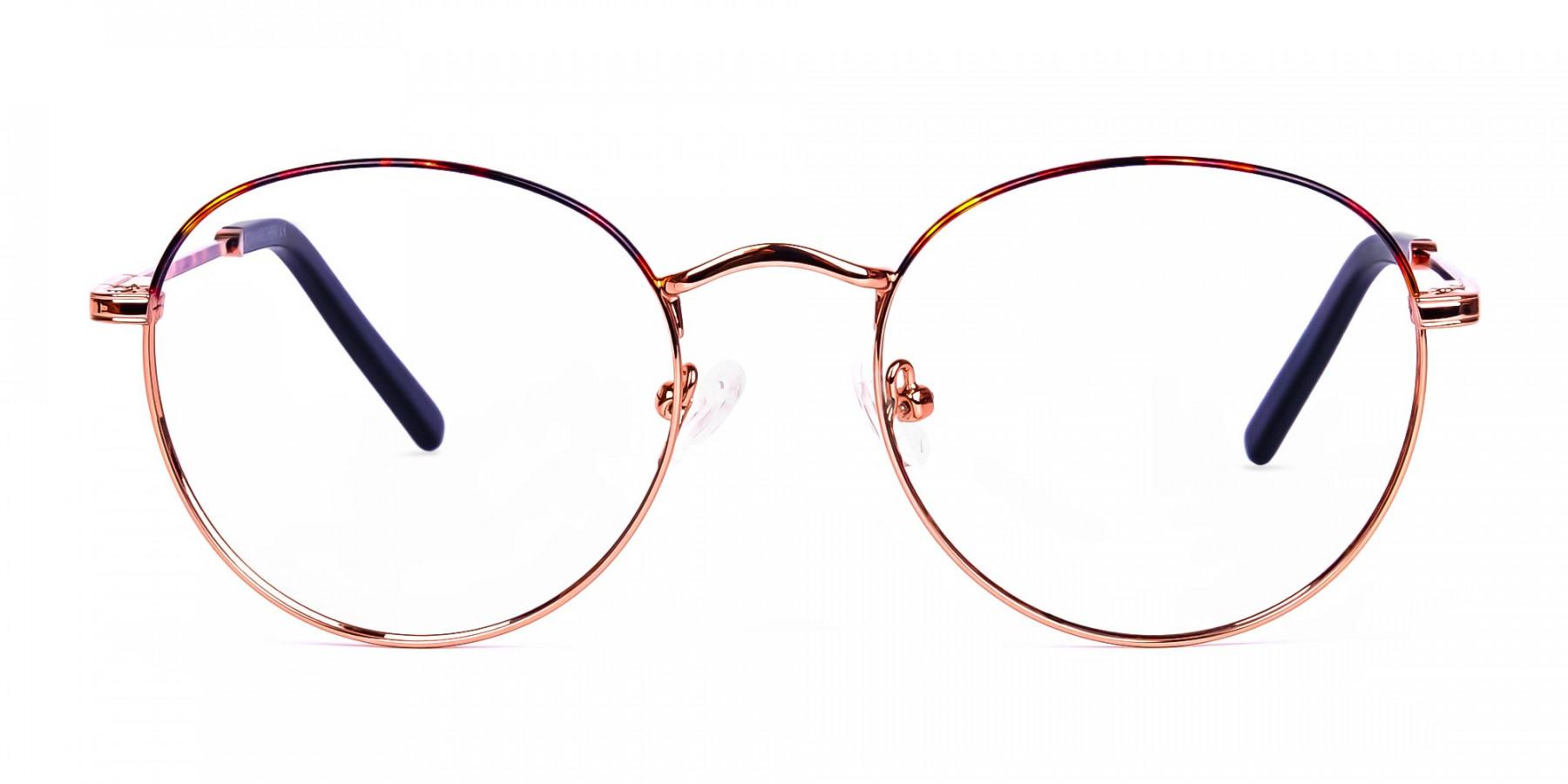 Gold-Round-Tortoise-Shell-Glasses-1
