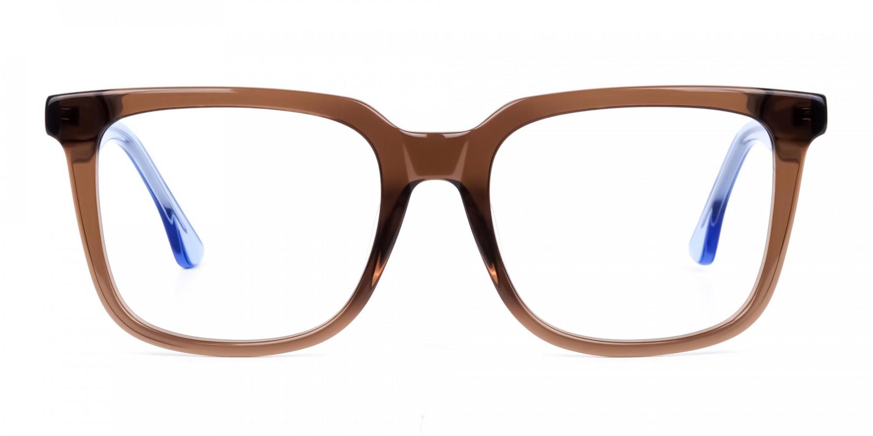 Crystal-Brown-Wayfarer-Glasses-1