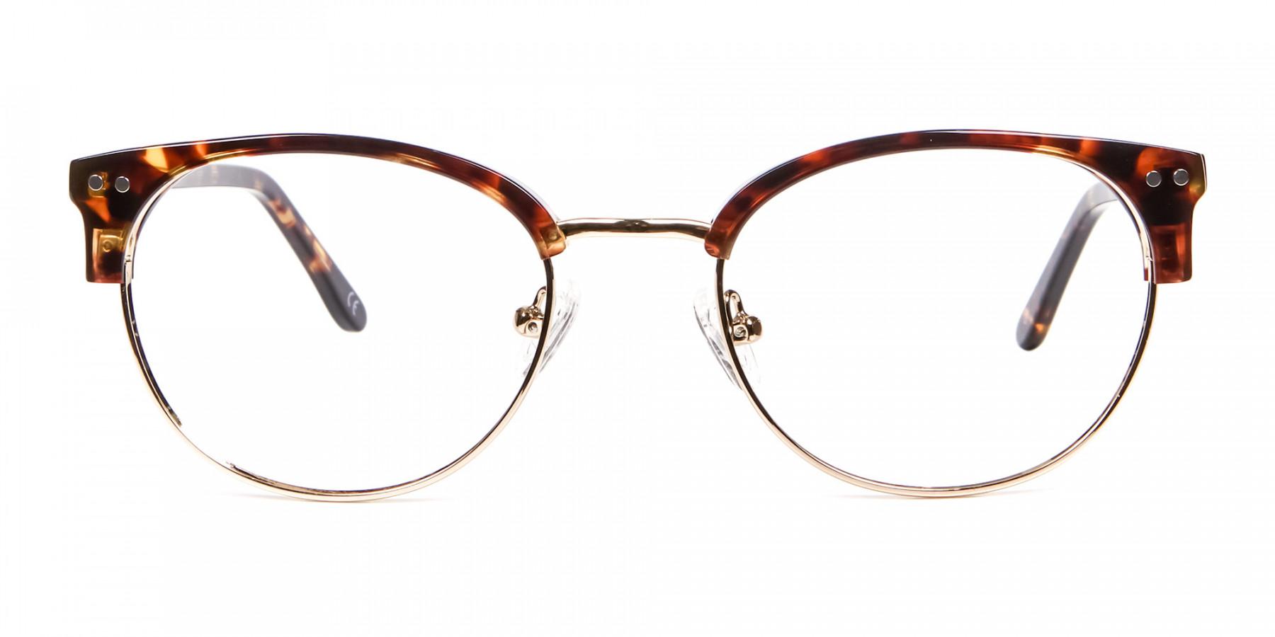 Havana Tortoise and Gold Glasses -1
