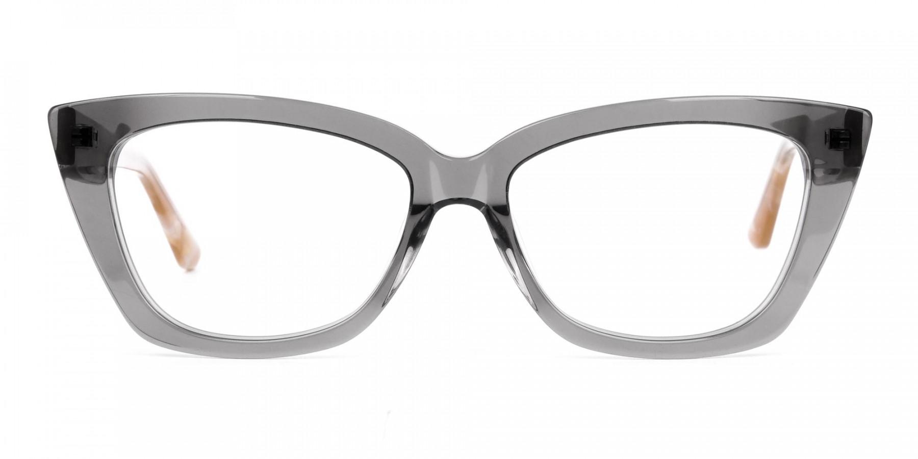 Grey-Crystal-Clear-Cat-Eye-Glasses-1