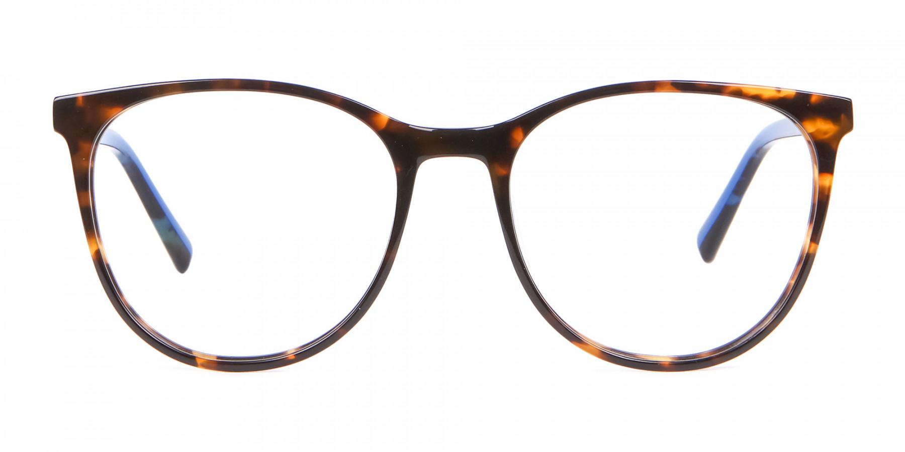 Fashion Round Frame in Tortoiseshell & Blue - 1