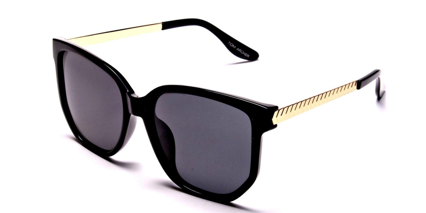 No Ordinary Pair of Sunglasses -2