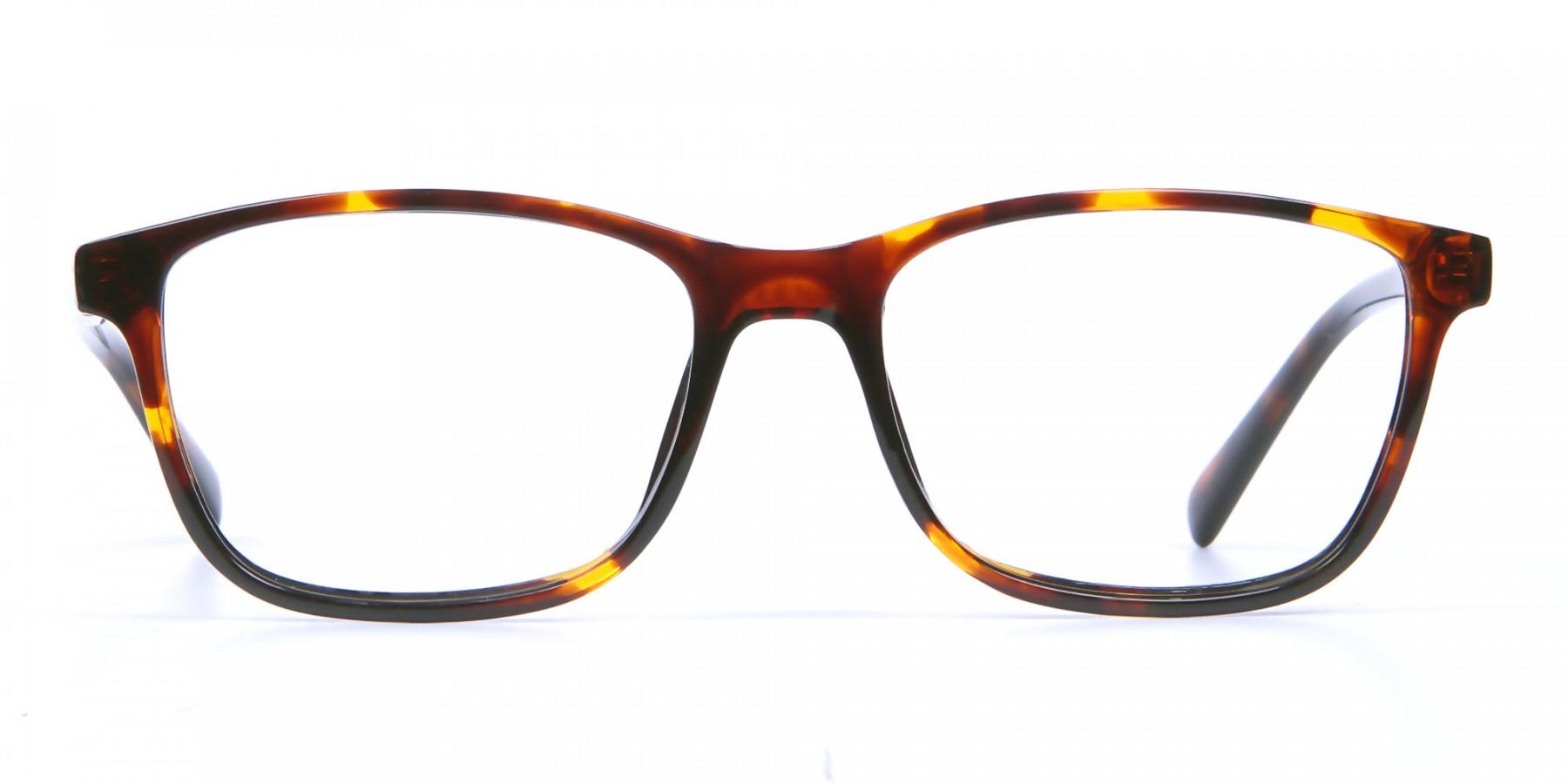 Wayfarer glasses in Tortoiseshell for Men & Women -1