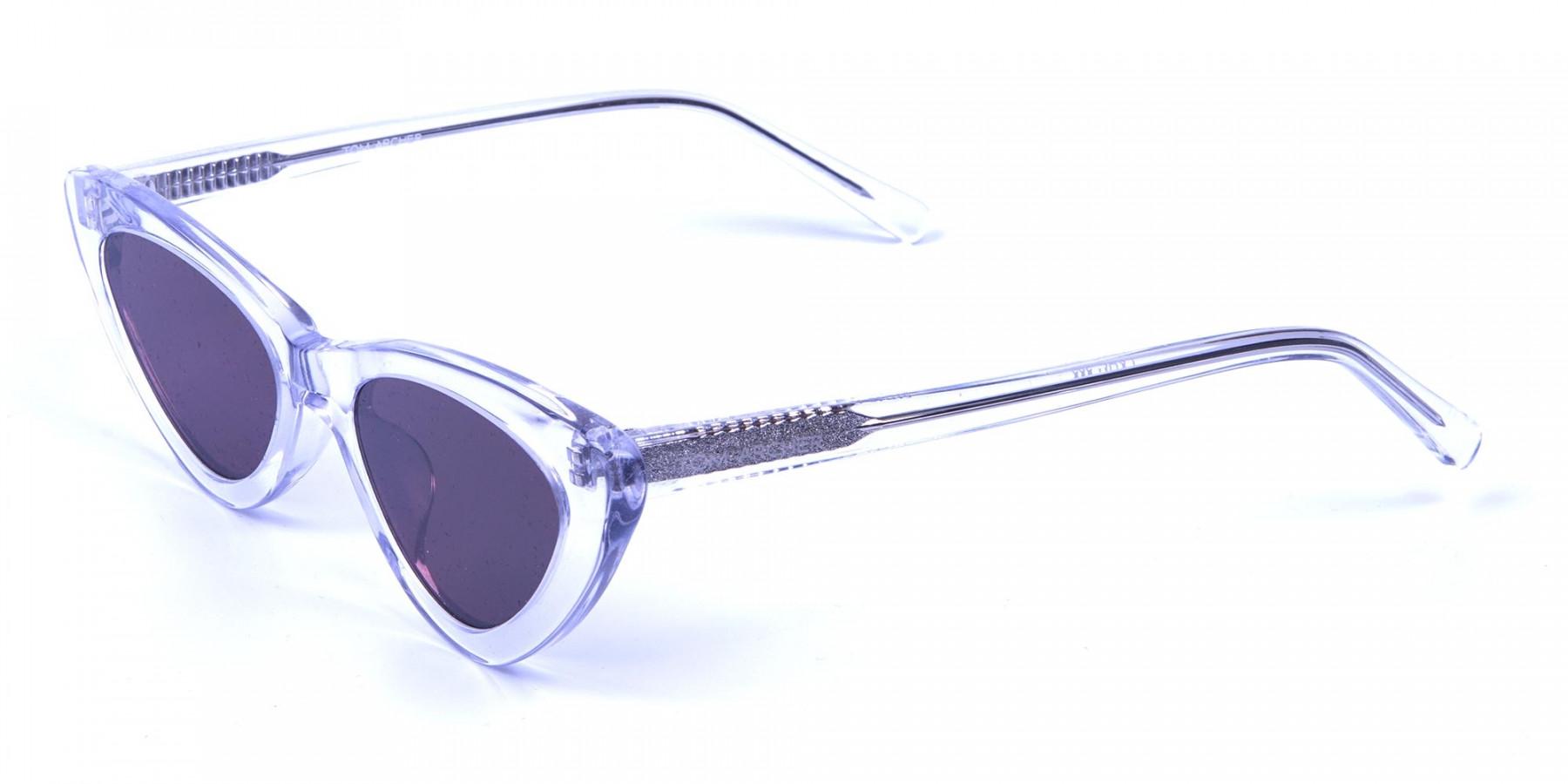 Clear Frame Cat Eye Sunglasses  - 2