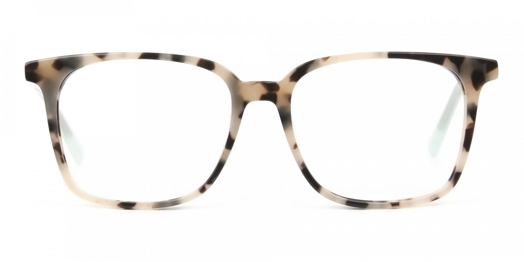 Crystal Teal Green Creamy Tortoise Glasses - 1