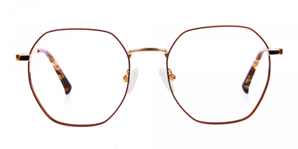 Brown and Gold Geometric Glasses