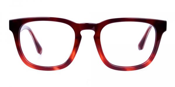 Wayfarer Tortoise Shell Glasses