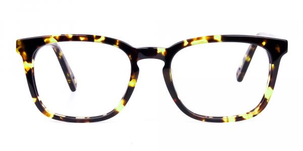 Tortoise Brown Wayfarer Glasses