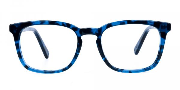 Blue Tortoise Wayfarer Glasses