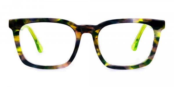 Green Tortoise Wayfarer Glasses