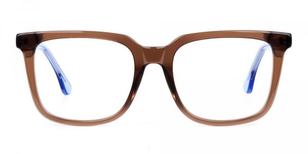 Crystal Brown Wayfarer Glasses