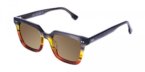Wayfarer Brown Sunglasses with Brown Tint