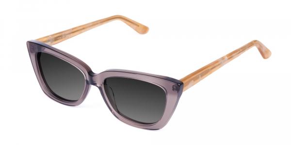 clear Wayfarer Sunglasses with Grey Tint