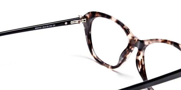 Cat Eye Transparent with Brown Accents -4