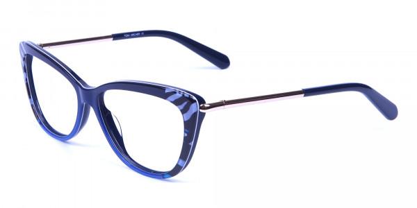 Blue Frames Sport Zebra Stripes -2