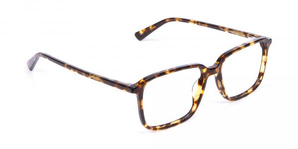 Havana & Tortoiseshell Glasses - 1
