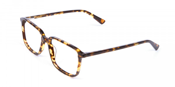 Havana & Tortoiseshell Glasses - 2