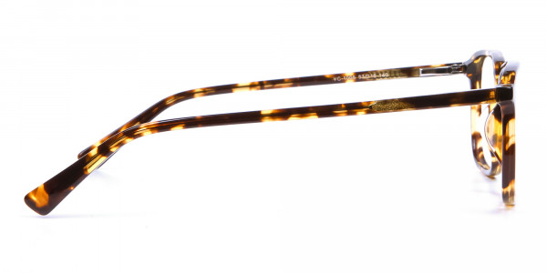 Havana & Tortoiseshell Glasses - 3