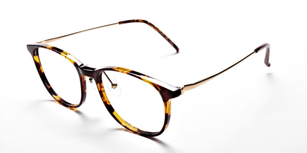 Tortoiseshell Round Glasses -3